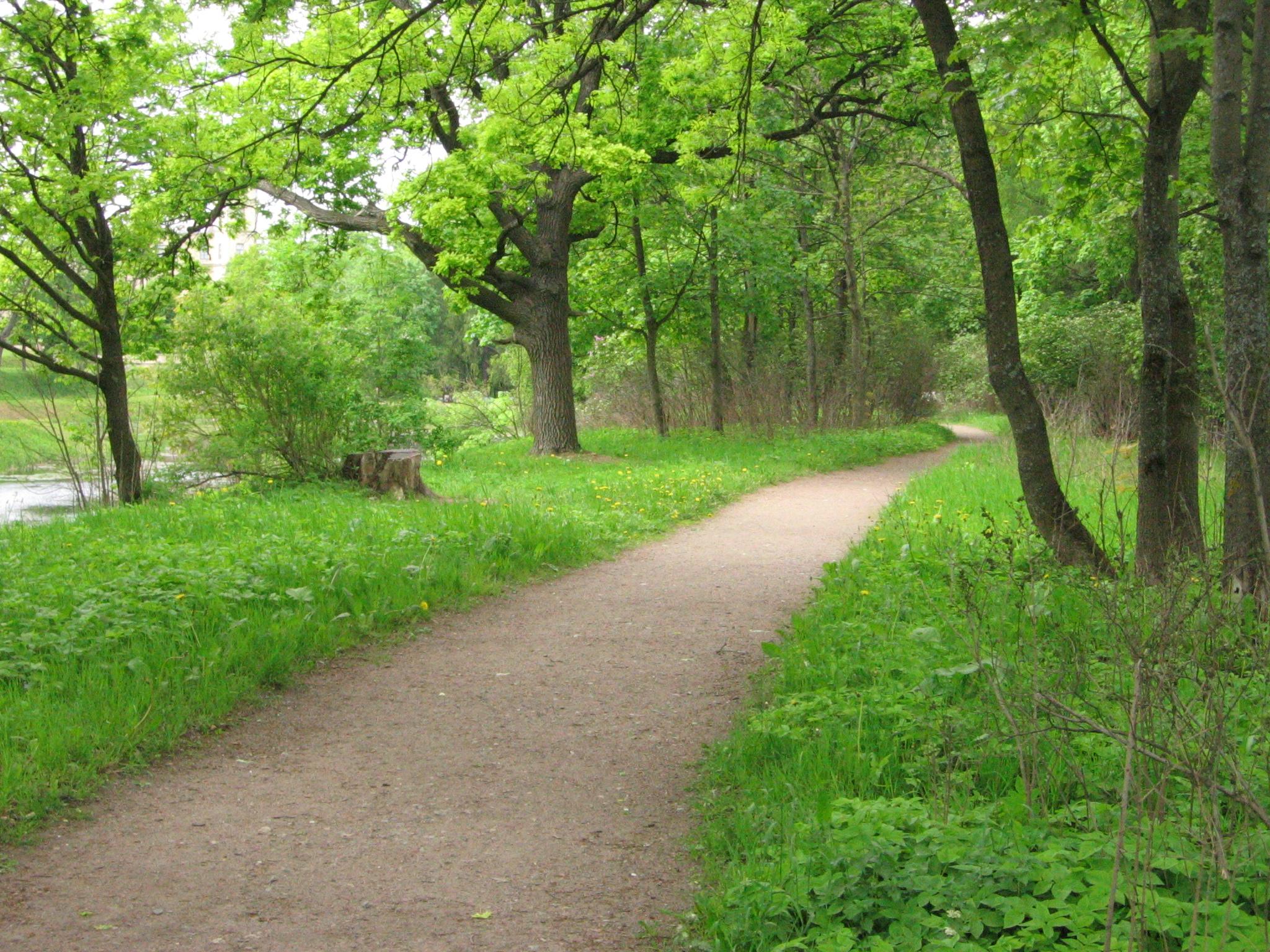 картинка зона парка